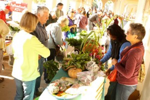 """Authentically Ajo Farmers Market"" @ Ajo Plaza 
