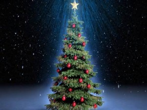 2015 Ajo Holiday Angel Wish Tree Applications! @ Desert Senita Health Center's Market Place Office | Ajo | Arizona | United States