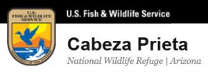 Annual Bird Count  @ Cabeza Prieta Wildlife Refuge | Ajo | Arizona | United States